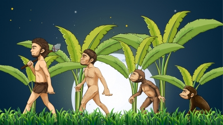 Ilustración de la evolución del hombre