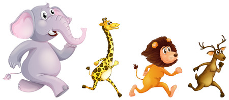 Illustration of the four wild animals running on a white background Vector