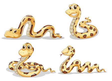 Illustratie van de vier enge slangen op een witte achtergrond
