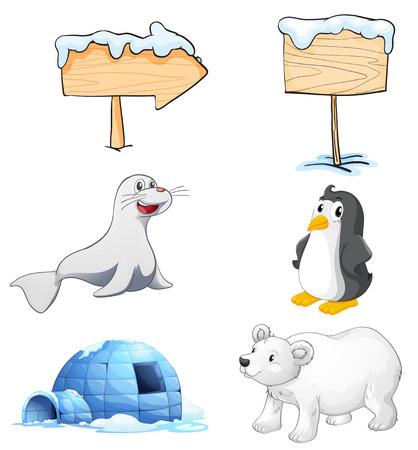 Illustrazione dei cartelli, degli animali e un igloo al polo nord su uno sfondo bianco