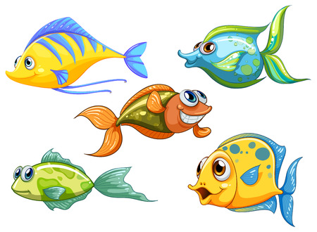 Illustratie van de vijf kleurrijke vissen op een witte achtergrond