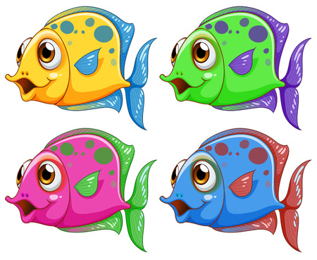 sanctuary: Illustration of the four colorful fishes on a white background