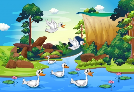 Illustration of a group of ducks at the river in the forest Vector