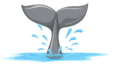 Illustration of a tail of a whale on a white background Vector