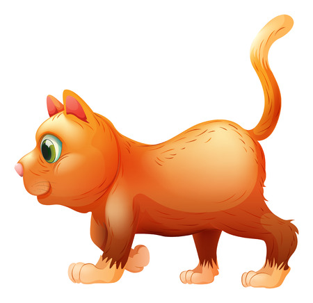 sideview: Illustration of a sideview of a fat cat on a white background