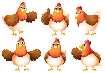 Illustration of the six fat chickens on a white background Illustration