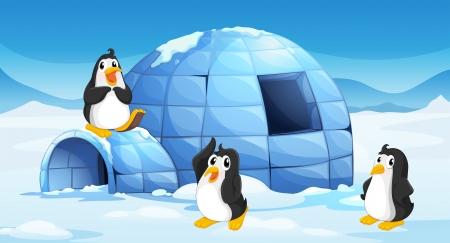 Illustratie van de drie pinguïns in de buurt van een iglo