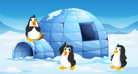 Illustration of the three penguins near an igloo Vector