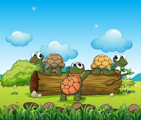 noontime: Illustration of the three turtles playing with the log