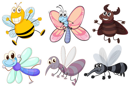 Illustration of the six flying insects on a white background Vector