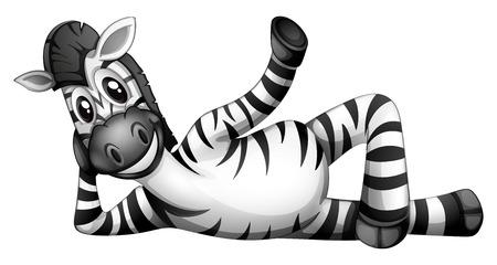 Illustration of a zebra resting on a white background Иллюстрация