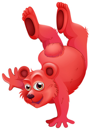 boastful: Illustration of a red bear doing a handstand on a white background Illustration
