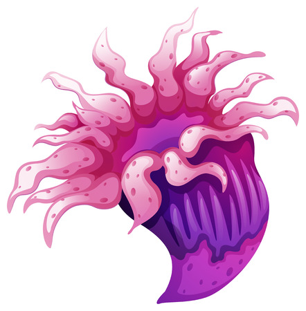 polyps: Illustration of a coral on a white