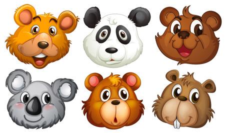 Illustratie van de zes hoofden van beren op een witte