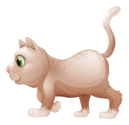 housepet: Illustration of a side view of a gray cat on a white
