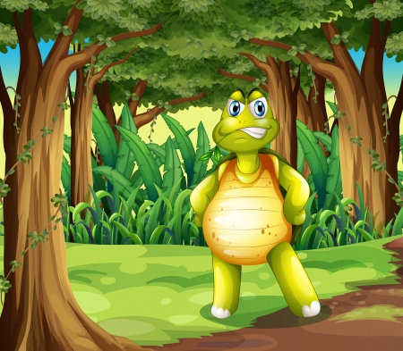 Illustration of a forest with a turtle standing in the middle of the trees Stock Vector - 25122911