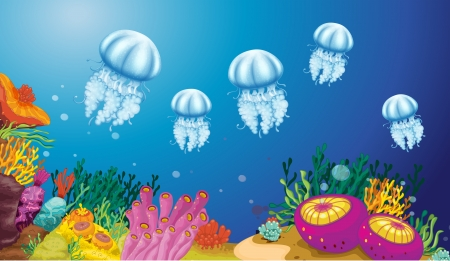 Illustration of the underwater creatures Vector