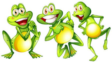 rana venenosa: Ilustraci�n de las tres ranas sonrientes en un fondo blanco