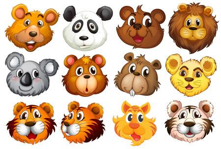 tigre caricatura: Ilustraci�n de la cabeza de los diferentes animales sobre un fondo blanco Vectores