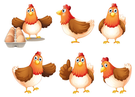 Illustration of the six fat hens on a white background Vector