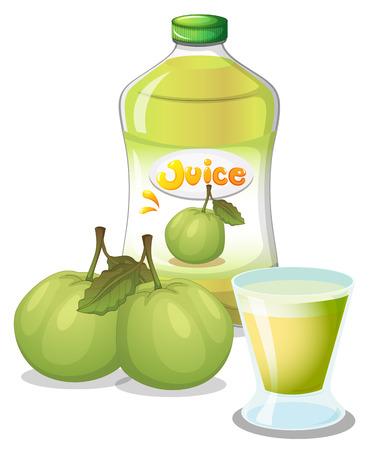 guayaba: Ilustración de un jugo de guayaba en un fondo blanco Vectores