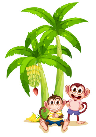 banana leaf food: Illustration of the two monkeys under the banana plants on a white background