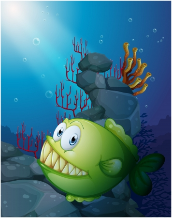 Illustration of a big piranha under the sea near the rocks on a white background Vector