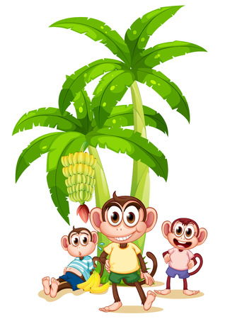 apes: Illustration of the three monkeys near the banana plants on a white background Illustration