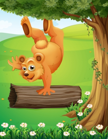 hilltop: Illustration of a bear at the hilltop playing near the tree