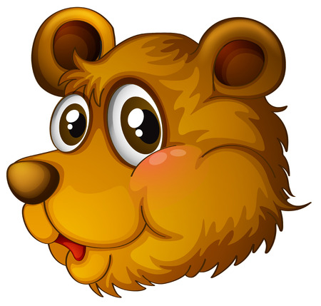 Illustration of a head of a cute bear on a white background Vector