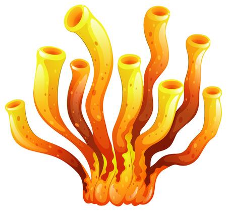 Illustration eines länglichen Koralle auf einem weißen Hintergrund Standard-Bild - 25532035