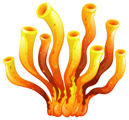 corales marinos: Ilustraci�n de un coral alargada sobre un fondo blanco