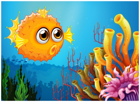 puffer fish: Illustration of a puffer fish near the coral reefs on a white background