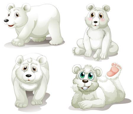 northpole: Illustratie van de vier schattige ijsberen op een witte achtergrond Stock Illustratie