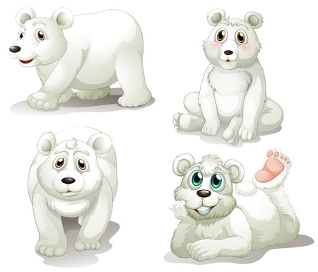 Illustration of the four adorable polar bears on a white background Vector