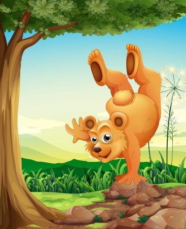 Illustration of a bear doing a handstand near the tree Vector