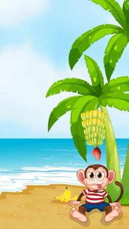 elongated: Illustration of a beach with a monkey under the banana