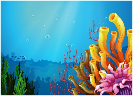 Illustration of the corals under the sea Vector