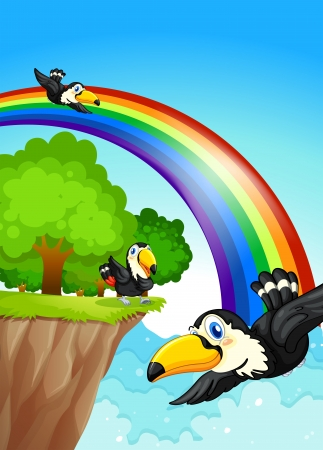 Illustration of a rainbow near the cliff with flying birds Illustration