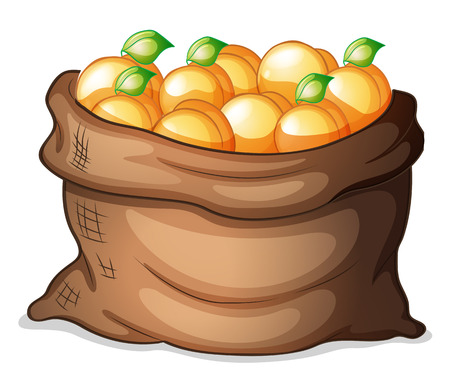 oranges: Illustration of a sack of oranges on a white background