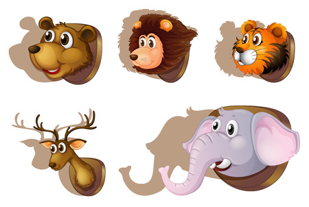 stuffed animals: Illustration of the five stuffed heads of animals on a white background