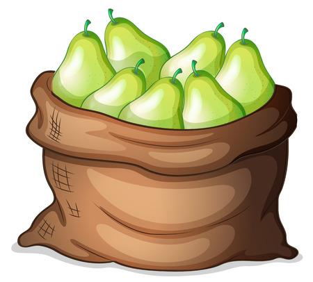 Illustration of a sack of green avocado on a white background Vector