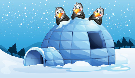 Illustration of the three penguins above the igloo Vector