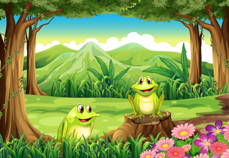 tree frogs: Illustration of the two frogs at the forest