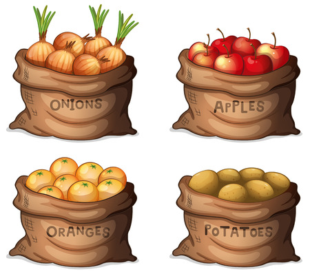 apples and oranges: Illustration of the sacks of fruits and crops on a white background Illustration