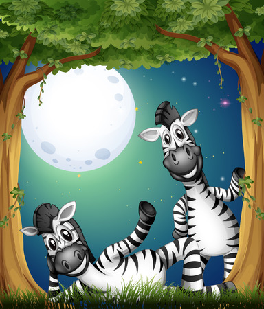 Illustration of the two zebras at the forest Vector