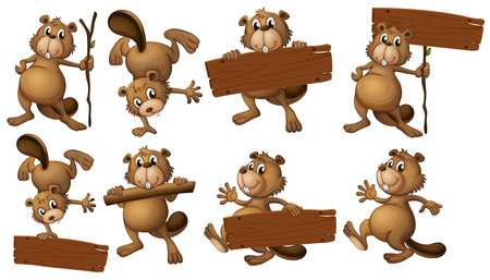 beavers: Illustration of a group of beavers with empty wooden boards on a white background