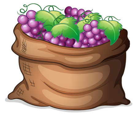 market gardening: Illustration of a sack of grapes on a white background