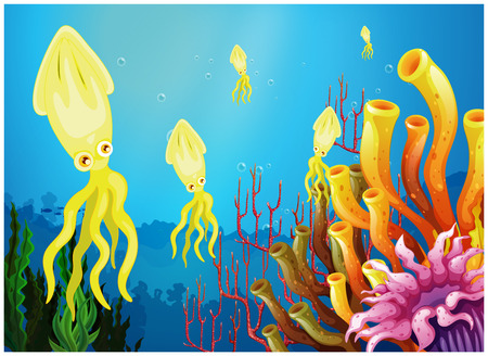 Illustration of the yellow squids near the coral reefs on a white background Vector