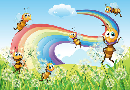 hilltop: Illustration of the bees at the hilltop and a rainbow in the sky Illustration
